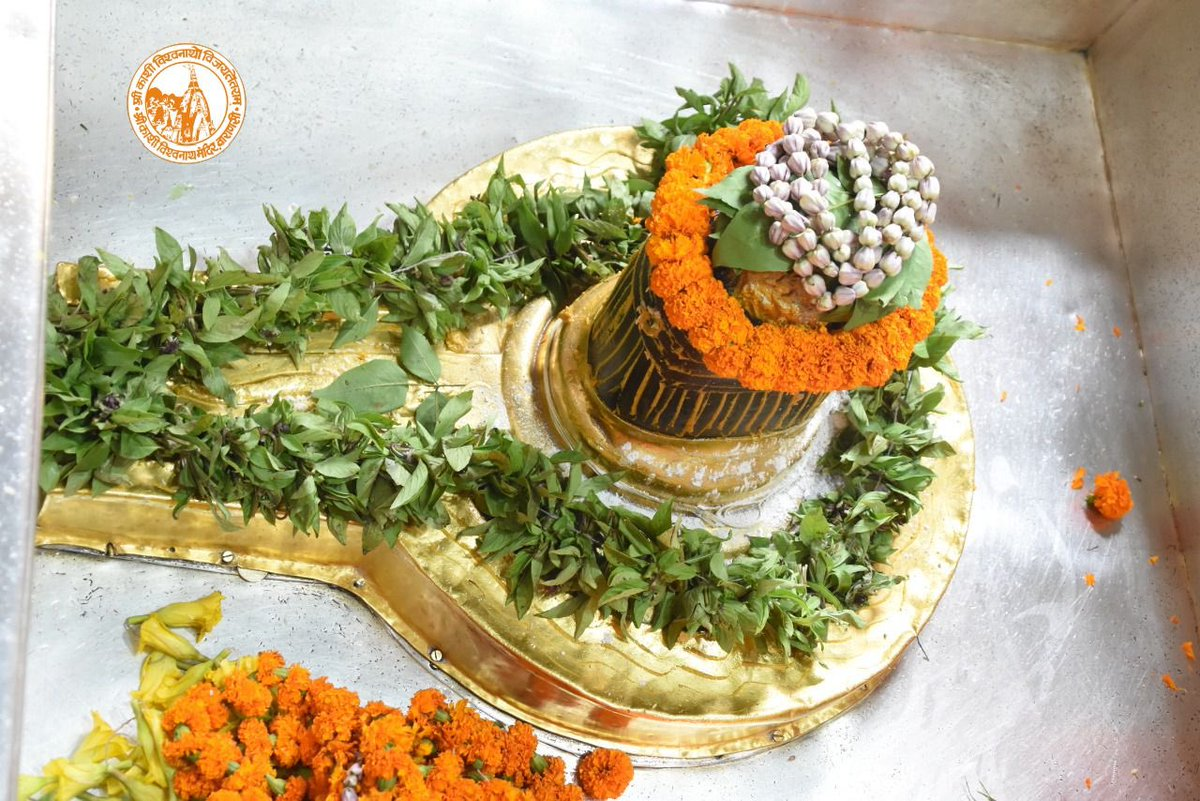 आज दिनाँक 22-10-2020 को श्री काशी विश्वनाथ मंदिर के दोपहर भोग आरती के दर्शन।  #ShriKashiVishwanath #Shiv #Mahadev #Baba #Temple #Nyas #darshan #blessings  #BhogAarti #Varanasi #Kashi #Jyotirlinga https://t.co/pLPeDM6Trn