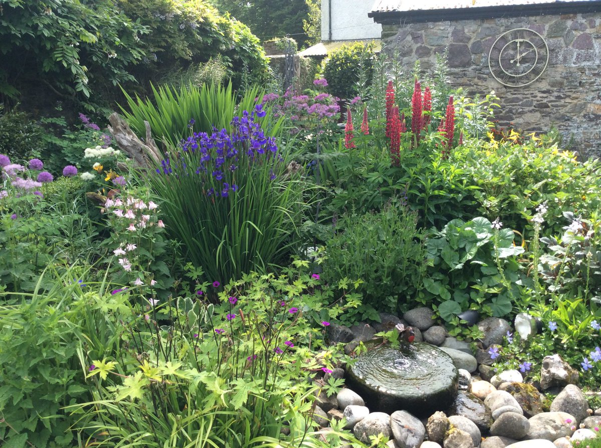 Templebreedy Gardens in Crosshaven is set beneath the beautiful Templebreedy Church, and has a number of garden 'rooms', including woodland areas, a formal box garden and a small walled garden full of herbaceous perennials.  @Corkcoco  @Garden_ie  @pure_cork  #purecorkwelcomes https://t.co/FNB30PiC8E