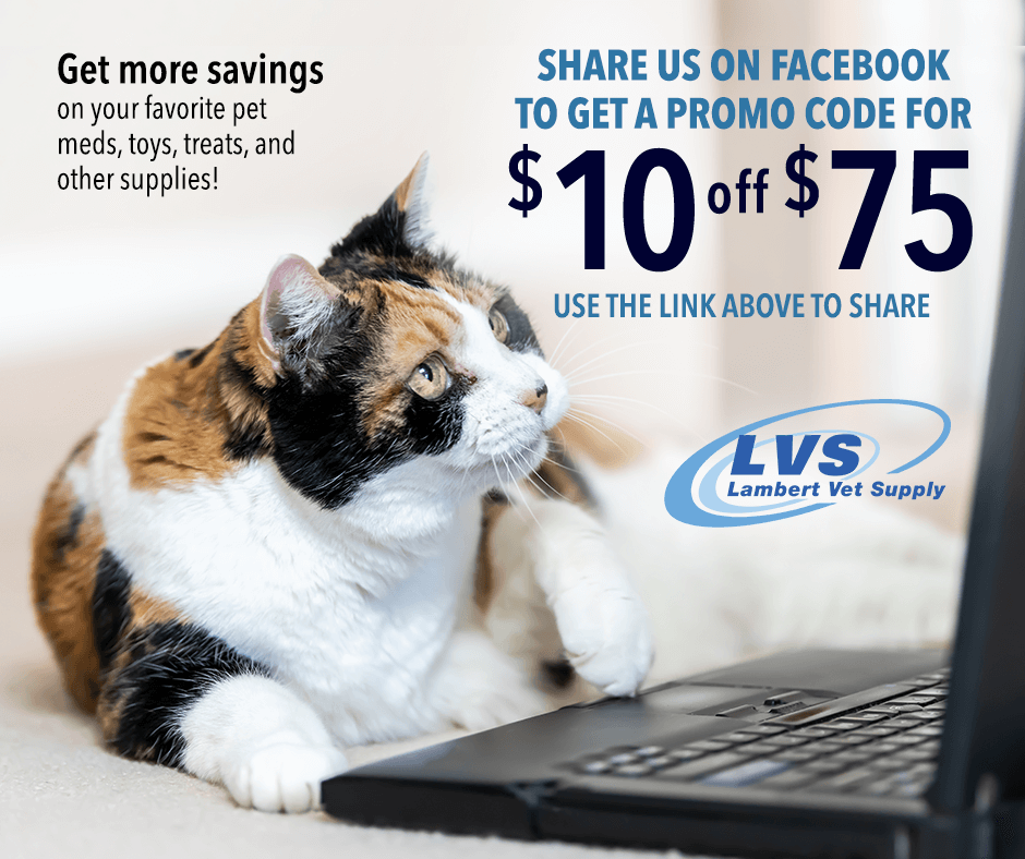 Did someone say savings? How's $10 off $75 sound when you share us on Facebook! Flea & tick treatments? Allergy meds? Food & treats? We can supply it all! Use this link to share and get your promo code --> https://t.co/Ddp50QN0FW https://t.co/ncUGNqMRRY