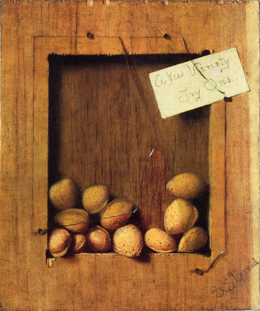 "National Nut Day, who knew?! ""A New Variety, Try One"" painted by De Scott Evans in 1890. The trompe l'oeil painting is in the permanent collection of Columbus Museum of Art. #InternationalArtAcquisitions #art #artist #painting #gallery #rochester #ny #collect #investments #evans https://t.co/iKjhYxB2nl"