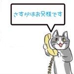 Image for the Tweet beginning: さすがはお兄様です  #這いよれ!ニャル子さん 再放送第4話 #tokyomx