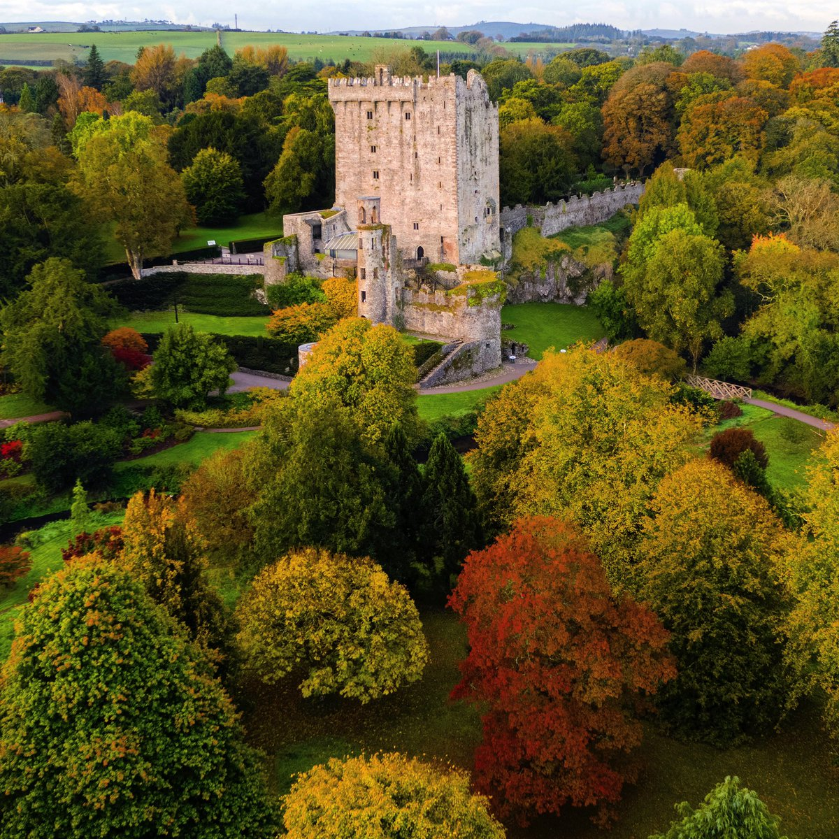 What a stunning day for an autumn stroll through our gardens! Breathtaking colour on show around every corner!  #staylocal #blarneycastleandgardens #purecorkwelcomes #cork #ireland #blarney #walks #like #follow #pictureoftheday #picoftheday #photography #autumn #autumnvibes https://t.co/qoWlJmmHHJ