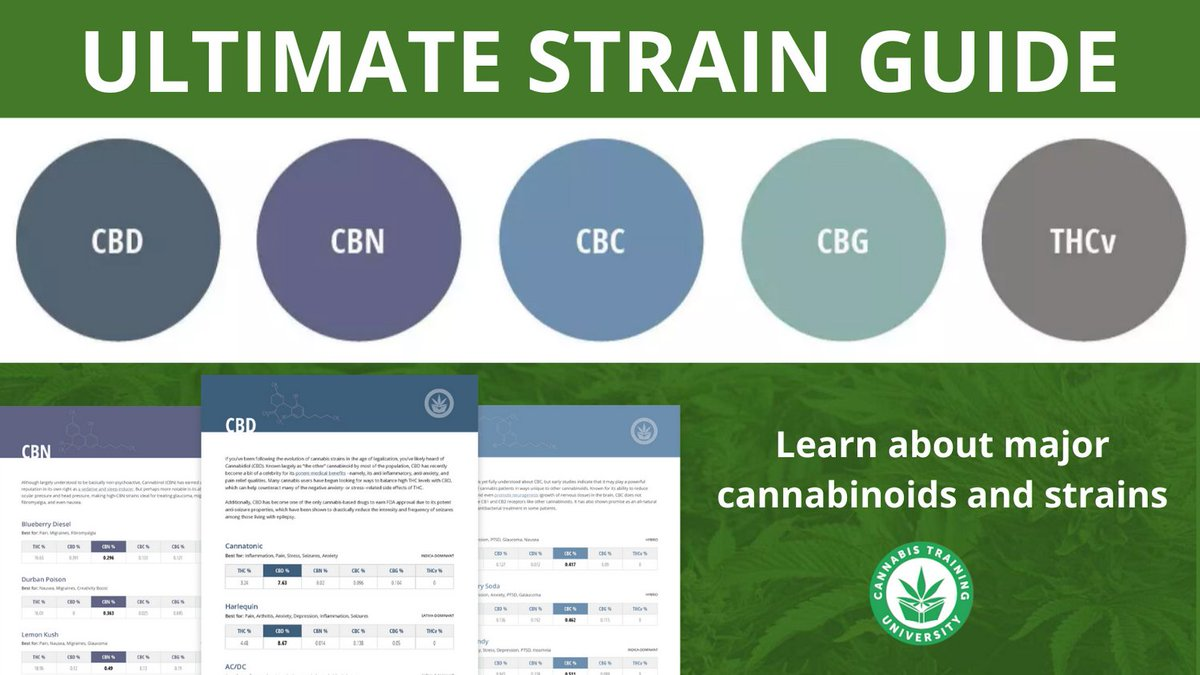 Learn about emerging #cannabinoids & #strains—download our strain guide today to prepare for a #cannabisjob: https://t.co/LprXJWWnbY  #CBD #CBN #THCv #CBG #CBC #marijuana #cannabis #growyourown #medicalmarijuana #edibles #jobtraining #jobs #jobsearch #budtender #dispensary #hemp https://t.co/1vuXbEItR9