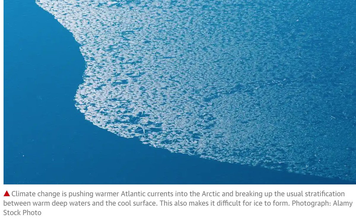 https://t.co/L0fN15mxri #ClimateAction #ClimateChange #ClimateEmergency #aerosoleffect #COVID19 #Riot2020  Alarm as Arctic sea ice not yet freezing at latest date on record https://t.co/dDkFD8N6wg https://t.co/EoK8eFtOzS