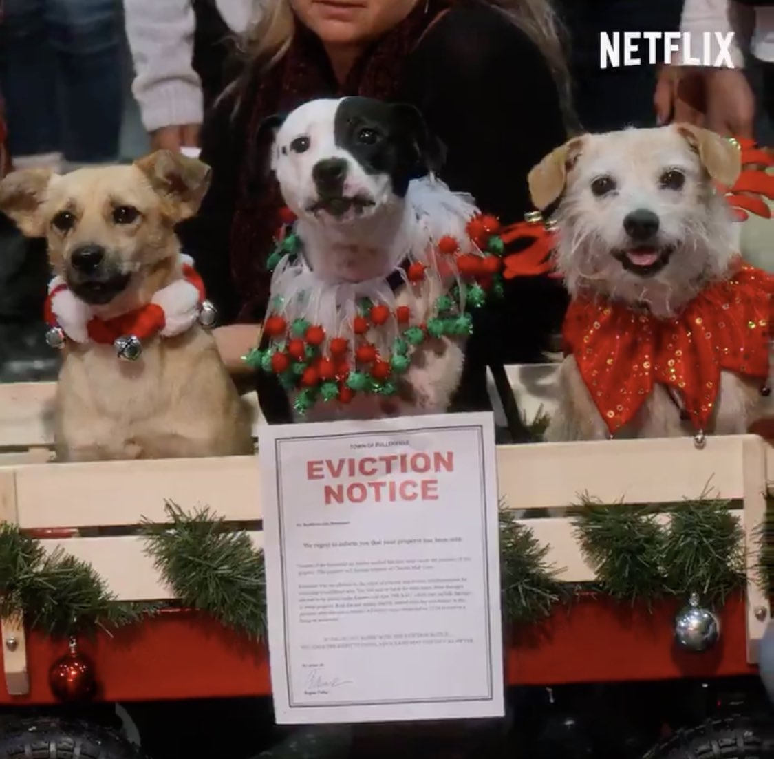 I love that in DOLLY PARTON'S CHRISTMAS ON THE SQUARE Christine Baranski is serving everyone in town eviction notices INCLUDING THE DOGS