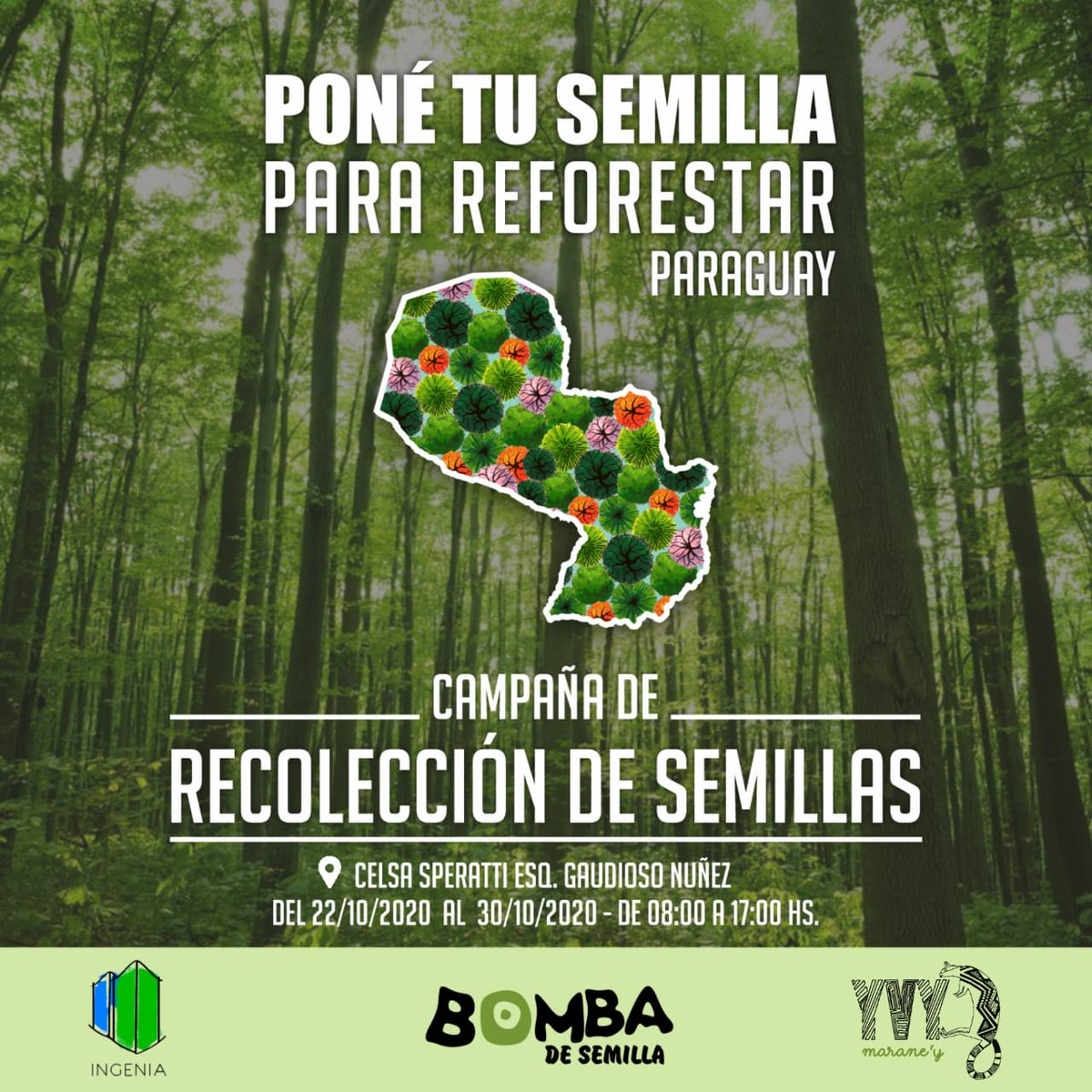 Todas las semillas sirven, pero demos prioridad a árboles nativos:Yvyra pyta, Jacarandá, Lapacho, Timbo, Cedro. @Santula @karenforcado @clariarias @aisman6 @cherovapete_ @CarmiMasi @Drunken_Forest me ayudan con reetwet? Más info en: https://t.co/AGAkpiUHFr https://t.co/QCyHXJoW8n https://t.co/CD1SK72cIc