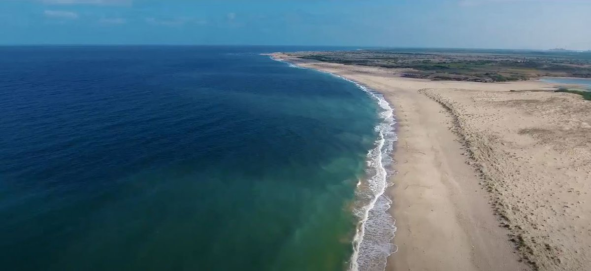 """Gujarat Information on Twitter: """"Of the 8 beaches, one is Shivrajpur beach  in Dwarka, #Gujarat - Located at 12 km from Dwarka, Shivrajpur Beach is a  beautiful beach with clear water and"""
