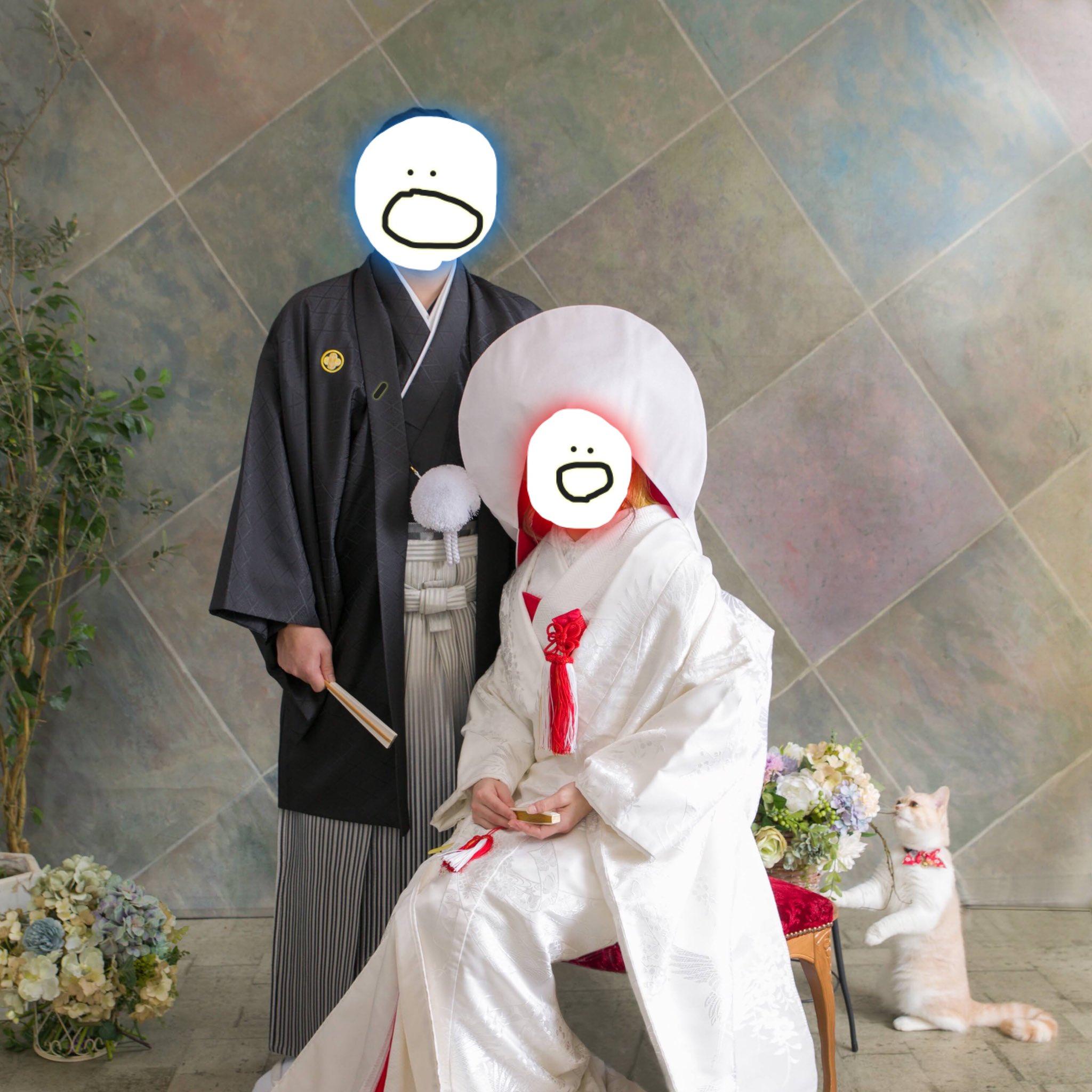 結婚記念写真と猫01