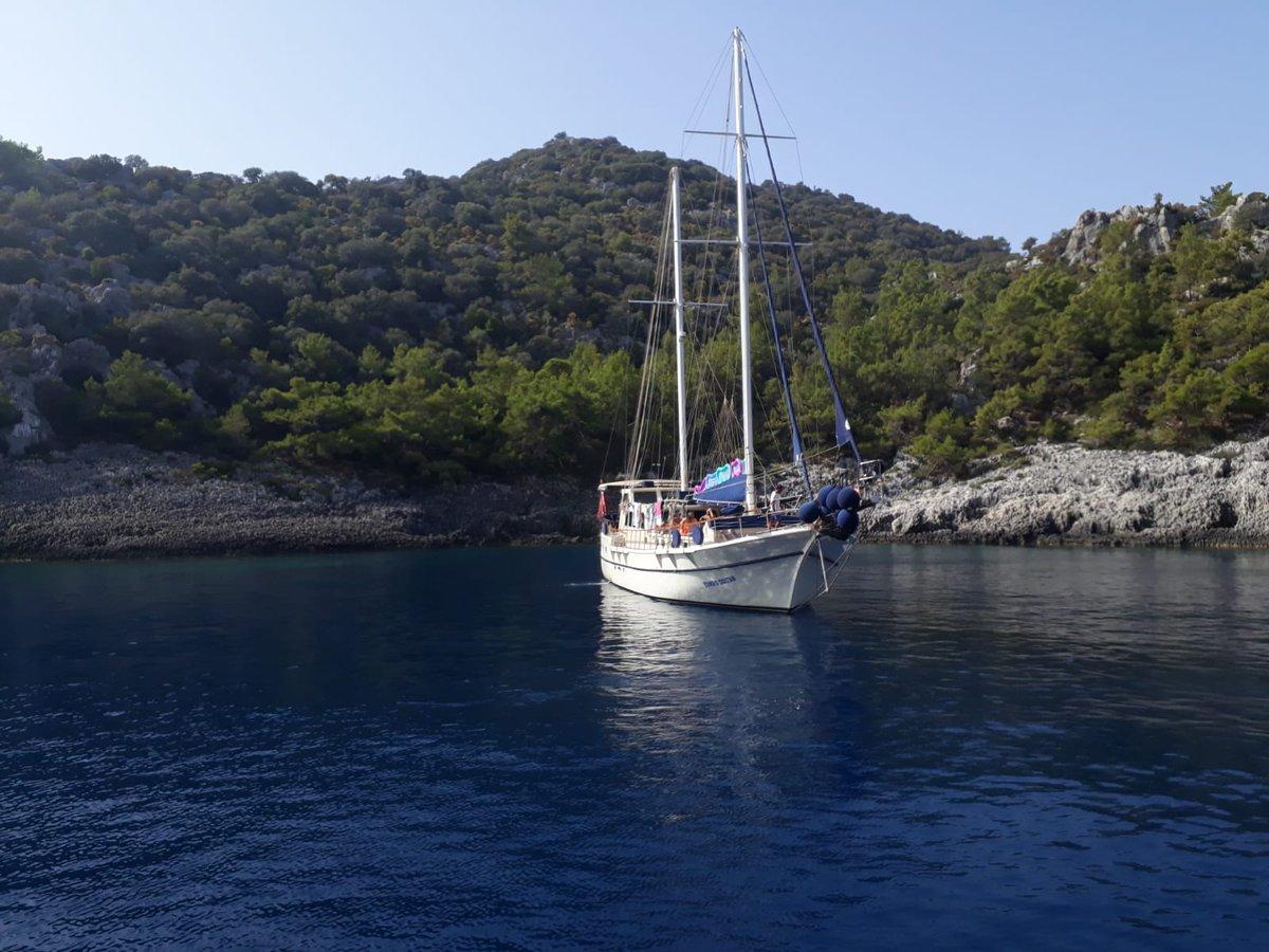 25 % Booker's Discount  💙  Follow Us 👍 #sandayachting  ☎️+90 252 413 54 54 📠+90 252 413 55 05 🌐https://t.co/WYk40s6OWV 💌 info@sandayachting.com    #marmaris #teknekiralama #yatkiralama #gulet #sailing #sail #maviyolculuk #guletkiralama #tekne #bodrum #göcek https://t.co/fFkg44x0pg