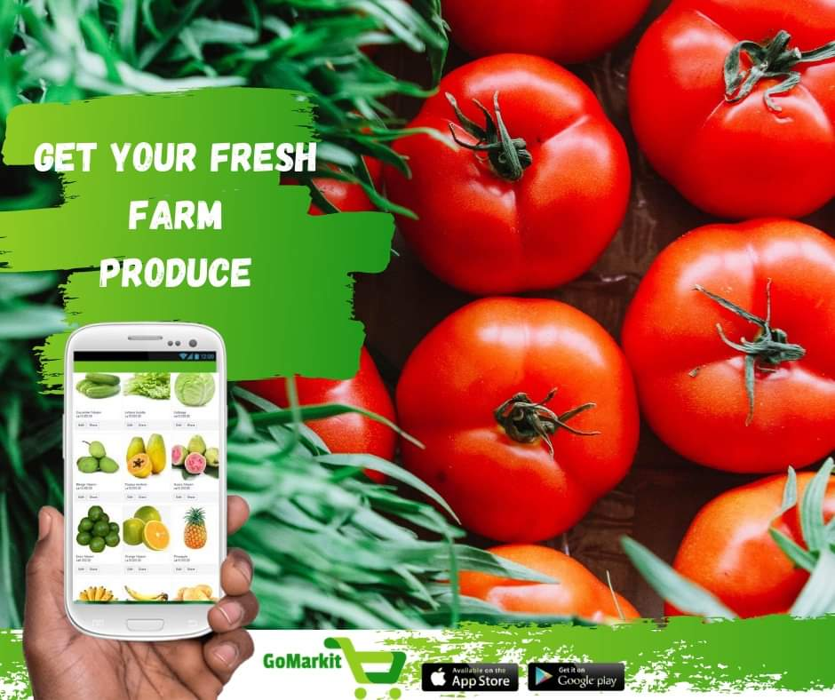 Fresh fruits and vegetables are more accessible than ever! Order now on GoMarkitApp for Free home delivery.  Download GoMarkit App:  https://t.co/uWtTrKUNrU  #gomarkit  #fruits #vegetables #ordernow #fresh #freetownmarket #FreeHomedelivery https://t.co/uQYfLa6Sre