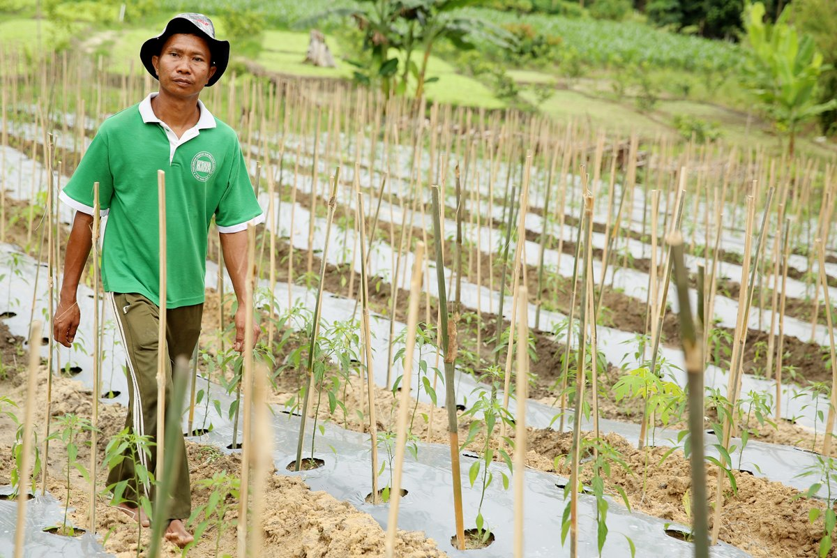 Climate change will continue to widen the gaps in food security https://t.co/ugC7fHMkuE while sustainable livelihoods continue to be a critical pillar for @AsiaPulpPaper #SustainableLivelihoods #ClimateChange via @EnvirHealthNews https://t.co/zyDOdFT0WG