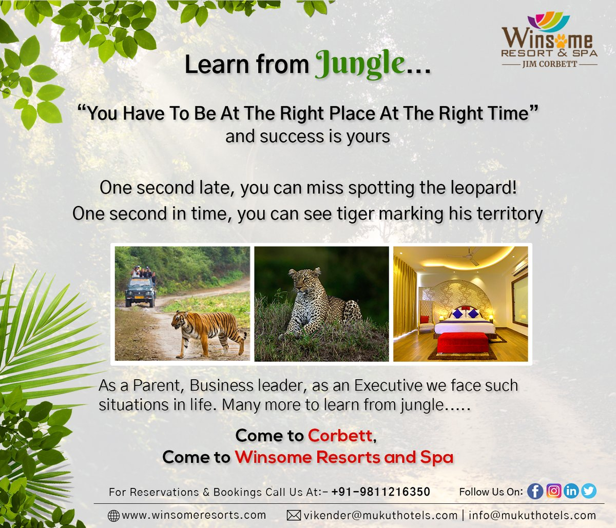 """Learn from Jungle....... """"You Have To Be At The Right Place At The Right Time"""" and success is yours.   Come to Corbett, come to Winsome Resorts and Spa.  Contact Us:- +91-9811216350  #junglesafari #corbettview #wildlifelovers #natureview #travellers #wildlifephotography #resorts https://t.co/2aW5GfyX4O"""