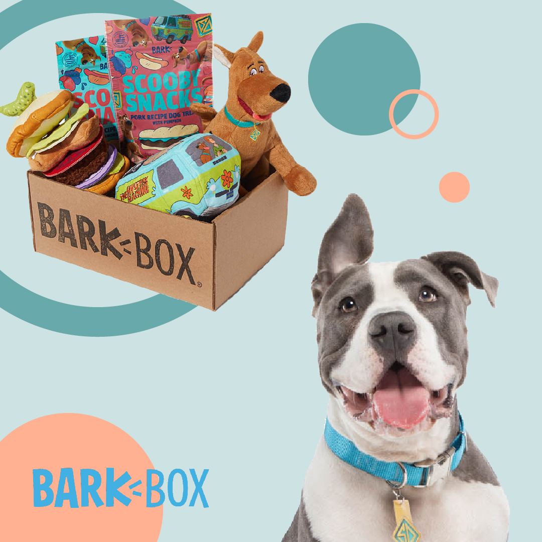 Get a Free Double Deluxe Upgrade on 6 & 12 month plans from @barkbox!   Grab this deal here: https://t.co/rtKTuH8rIA  #DogPeopleGetIt #DogsOfBark #PraiseDog #BarkBox https://t.co/OyS9aVA5y5