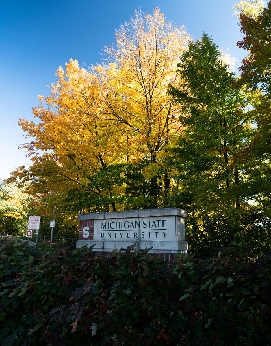 Fall in East Lansing 😍🍁