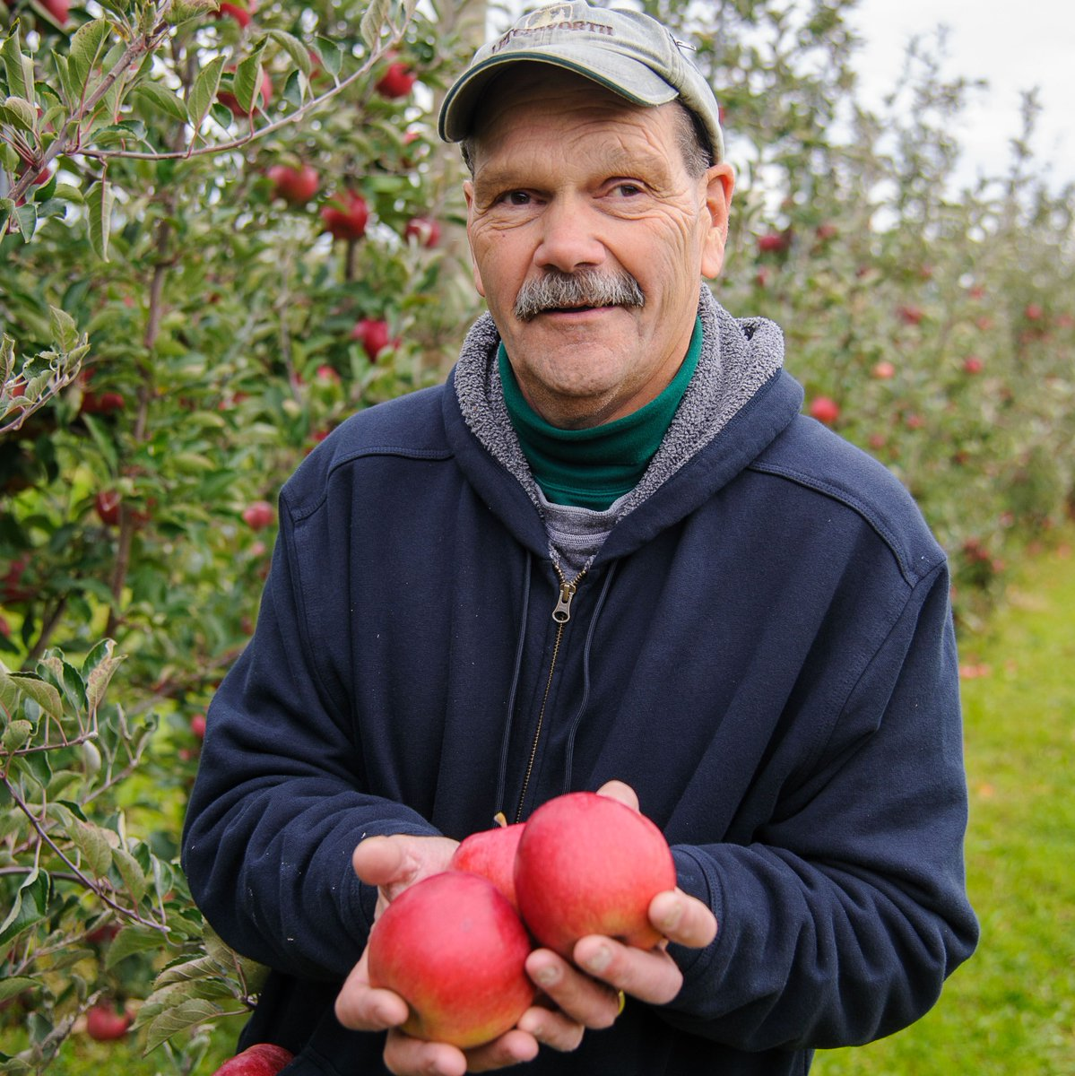 Meet Rick, an apple farmer who donated over 22,000 pounds of apples to his local food bank! We're so thankful for farmers like Rick! #NationalFarmersDay 🍎👨🌾  Read Rick's story: https://t.co/OxkTxaKzkB https://t.co/oDugk0eLwE