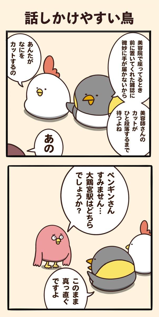 話しかけやすい鳥 https://t.co/yE2hSuhPip