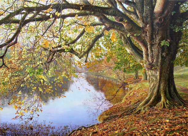 #oilpainting Autumn by the River Wharfe #YorkshireDales  A calm stretch of the river near the little suspension bridge at Hebden near Grassington. https://t.co/8Njhbk0qrI