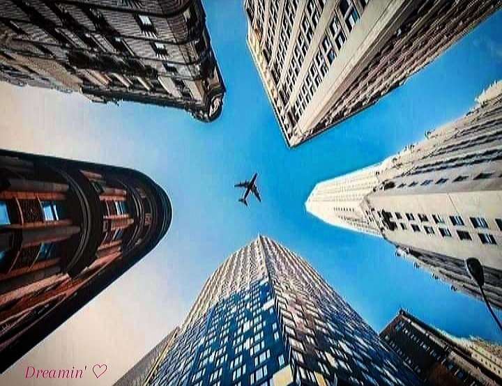 Head held High, Soar up High, Dream High, Do your Best towards Success. Nothing is Impossible just always Try! ✈ #Dreamin' ♡ https://t.co/q519YlLbhf