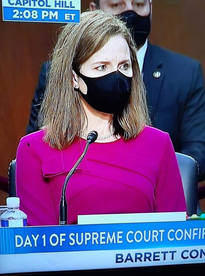 Antifly shows up at the SCOTUS hearings.  Antifly once again gives us all hope. #SCOTUShearings #SCOTUS #Flygate #Antifly https://t.co/d9vmUL83iN