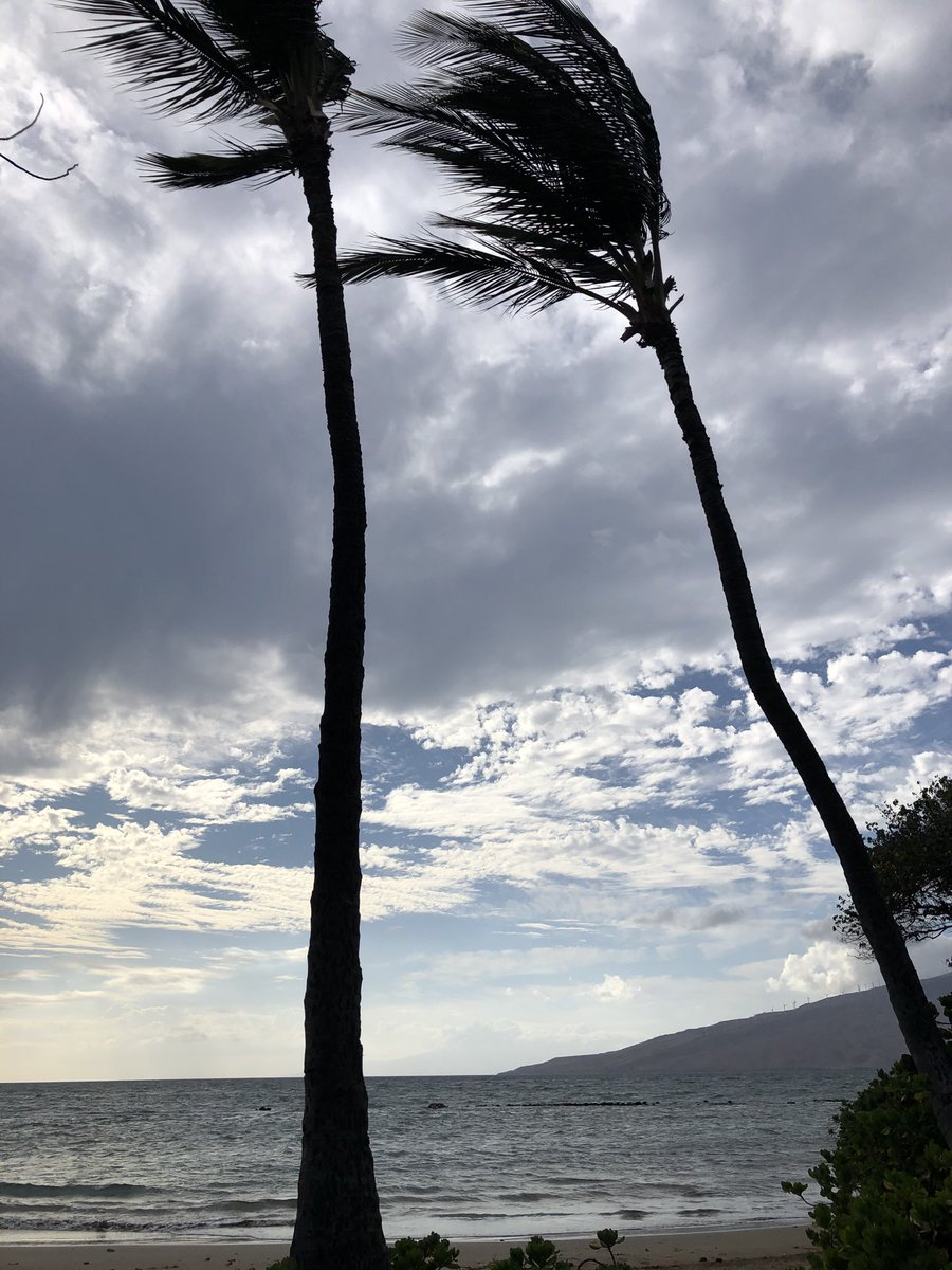 test Twitter Media - Partly cloudy and breezy in Kihei. #CMweather #Maui #Kihei #Southside #Beach #Ocean #MagicalMaui #MauiNokaoi https://t.co/lTuABEzx84