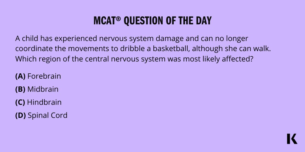 Happy Wednesday! It's your MCAT Question of the Day! When are you taking your test? Let us know below and come back at 4pm ET for the answer!  #MCAT #MCATpractice #FuturePhysician #FutureDoctor #MCATQuestionoftheDay #KaplanMCAT https://t.co/uNt9KGN2wp