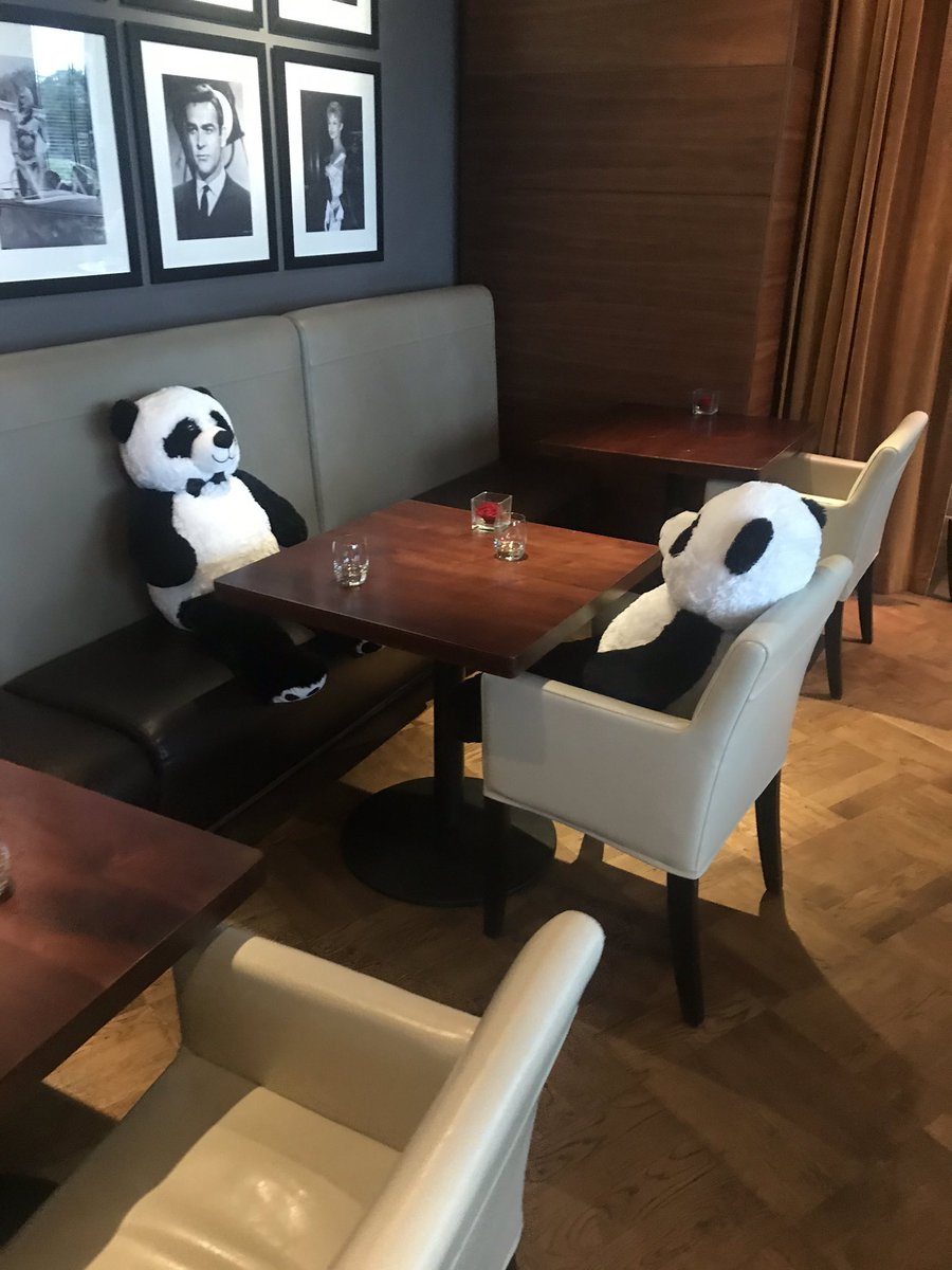 Fantastic stay at @aviatorhants!  Amazing food (and cocktails 🍹), and great to meet the social distancing pandas in the restaurant.  Fantastic idea!   #aviatorhampshire #pandamonium #venuesearchuk #venuefinding #eventplanner #wemakeevents