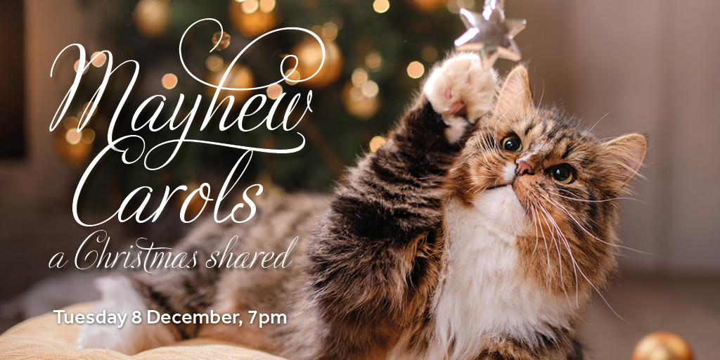 This year, we're bringing our annual Christmas carols concert to the comfort of your living room! 🎶 🤶 🎄   Share Christmas with Mayhew, and join us online on 8 December to enjoy festive readings and performances by very special guests. 👉 . #MayhewCarols