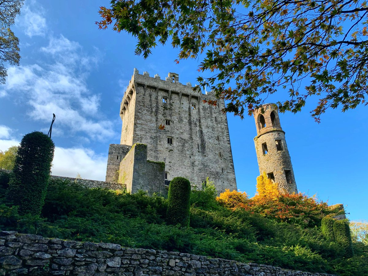 Blue skies, gorgeous autumn colour and autumnal sunshine! The perfect combination to explore all our gardens and walks have to offer!   #blarneycastleandgardens #purecorkwelcomes #makeabreakforit #blarney #weekend #like #follow #pictureoftheday #picoftheday #photography #autumn https://t.co/3J5cctACDx