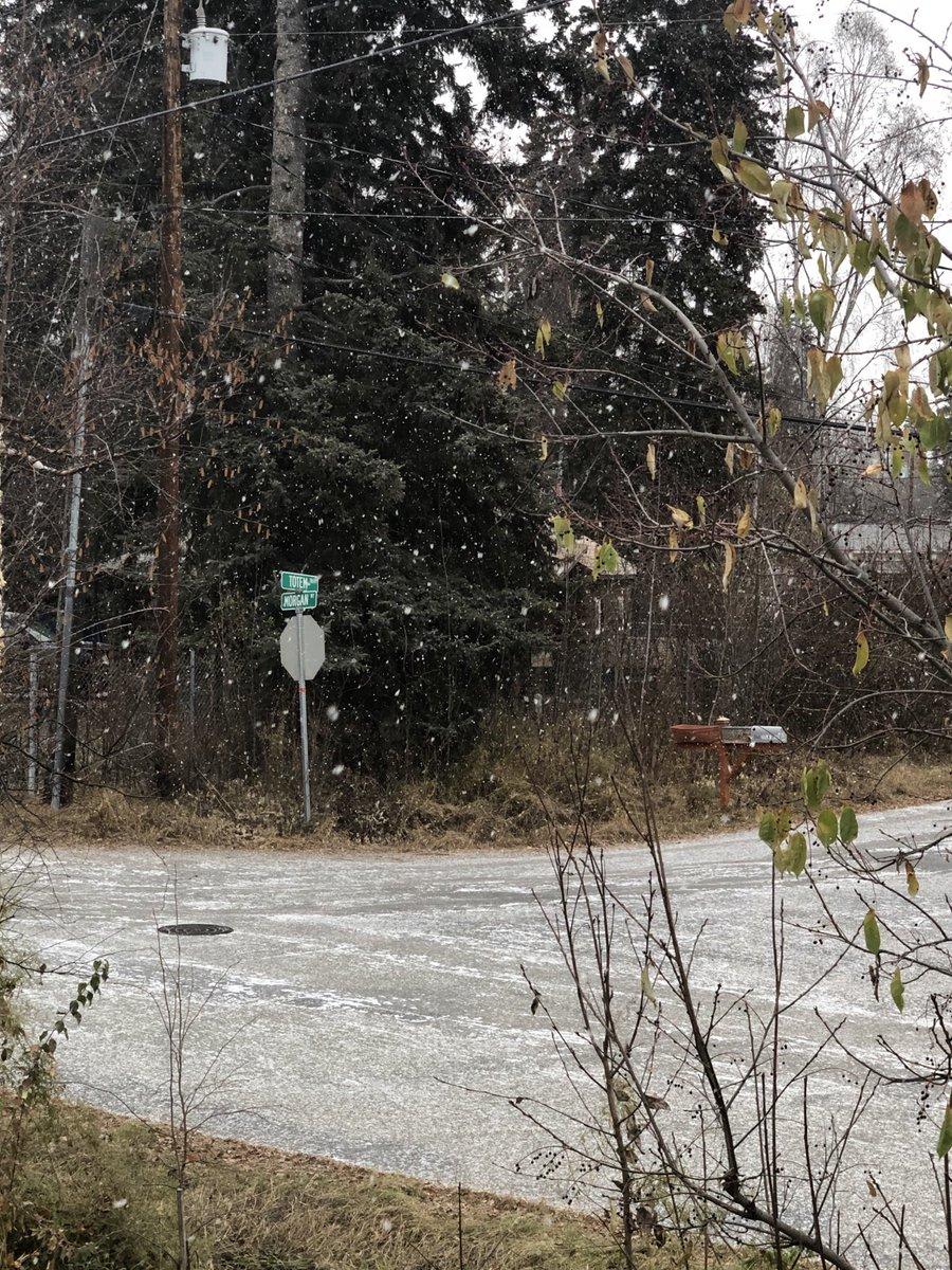 初雪❄️ まだ根雪にはならないと思いますが。昨日冬タイヤに交換したので、ちょっと安心です😊 運転される方はくれぐれも気を付けて!急ブレーキ急ハンドルはいけません!#アラスカ #フェアバンクス #初雪 #降雪 #雪 #alaska #fairbanks #snow #firstsnowfall https://t.co/BZT4Yhpd4Y