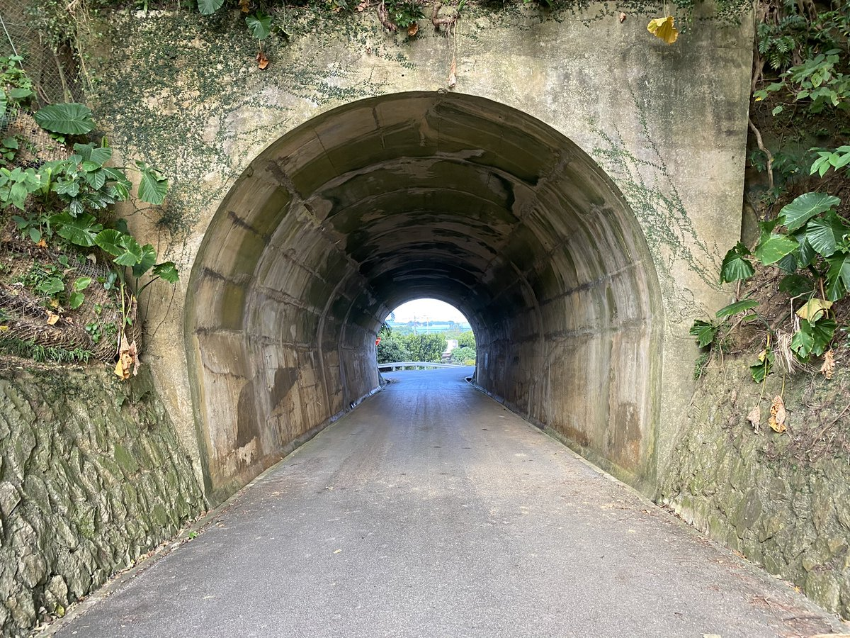 沖縄本島の名護市の屋我地島の反対側の集落にある仲尾トンネル。  素敵なカワイイトンネル☺️  #沖縄本島 #名護 #仲尾トンネル #トンネル https://t.co/iHPPXXvE9p
