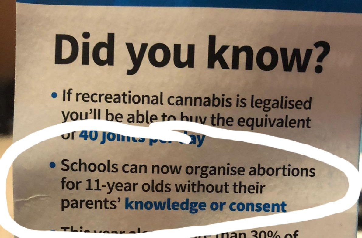 #nzpol so got this pamphlet in the mail from the New Conservative party. I don't even know where to start...they aren't concerned about how the 11 year old ended up pregnant, or who raped her. They're worried about the education system giving her the care and support she needs? https://t.co/nx9DfuiCmi