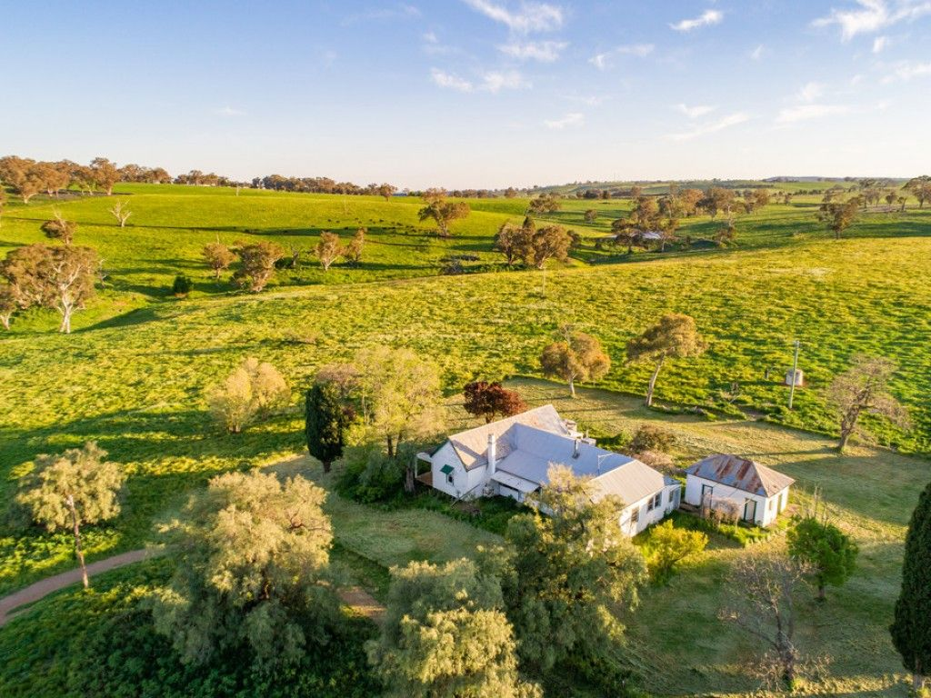 HIGH QUALITY, TABLELANDS GRAZING COUNTRY https://t.co/MRObaWa707  Comprising (166Ha) 410acres, of strong, volcanic red basalt grazing, with a complementary 100acres* of excellent farming country, ideal to run 85-100 breeding cattle. #nsw #cargo #forsale #farmproperty #realestate https://t.co/8Cd6Z34q0n