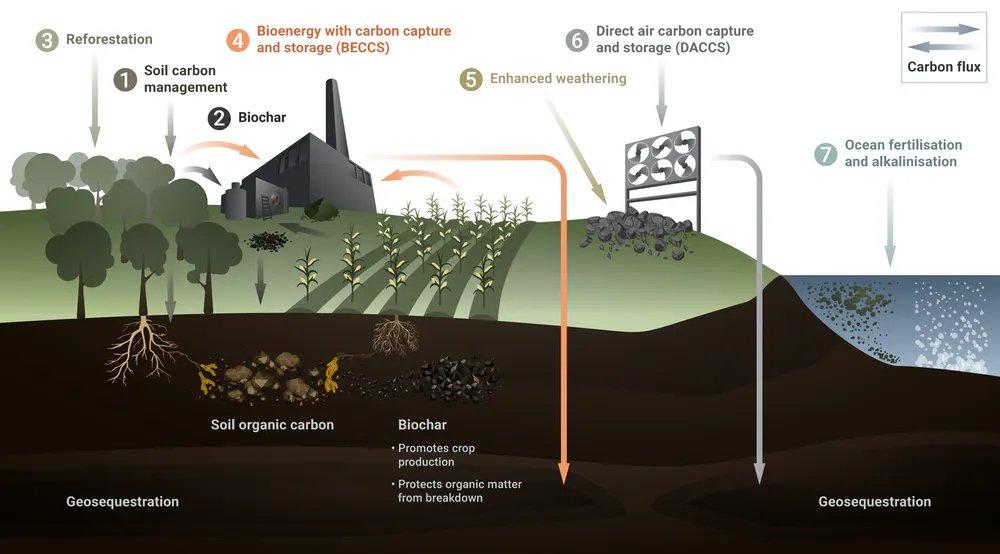 The seven ways to suck CO₂ out of the atmosphere: 1. Soil carbon management 2. Biochar 3. Aff/Reforestation 4. Bioenergy with Carbon Capture & Storage (BECCS) 5. Enhanced weathering 6. Direct air carbon capture & storage (DACCS) 7. Ocean fertilisation  https://t.co/OHwm03X2Gx https://t.co/dxvCmWJk80