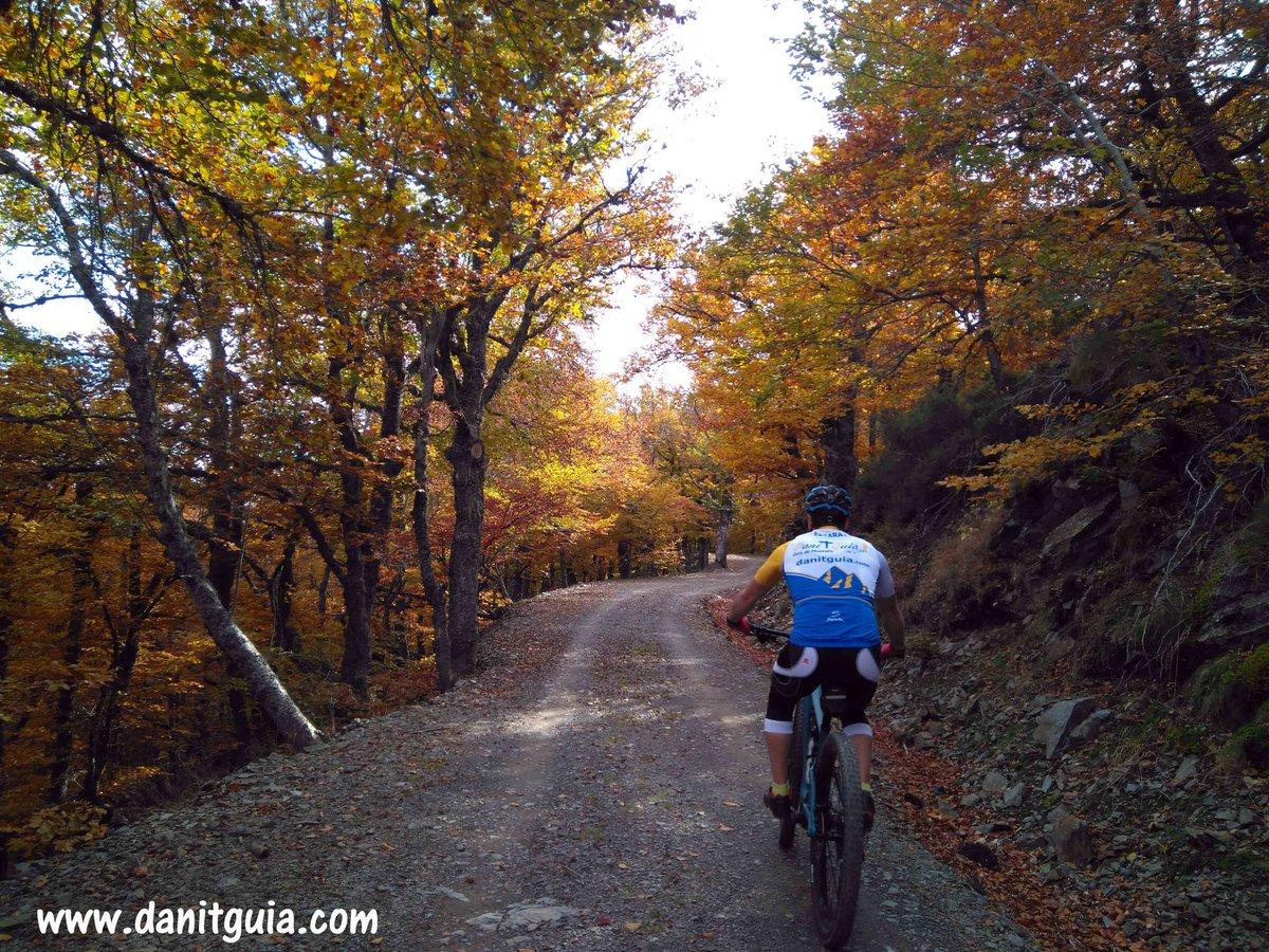 Disfrutando del #otoño  con nuestras #biciselectricas #specialized #turbolevo SL del #2021 https://t.co/HvxRs7Lvr8 La Rioja Turismo #Ezcaray @info_ezcaray #bike #mountainbike #montaña #guiasdemontaña #bicicletas #ebikes #senderismo #btt #mtb #mtbguide #alquilerdebicicletas https://t.co/MI9KYaANZm