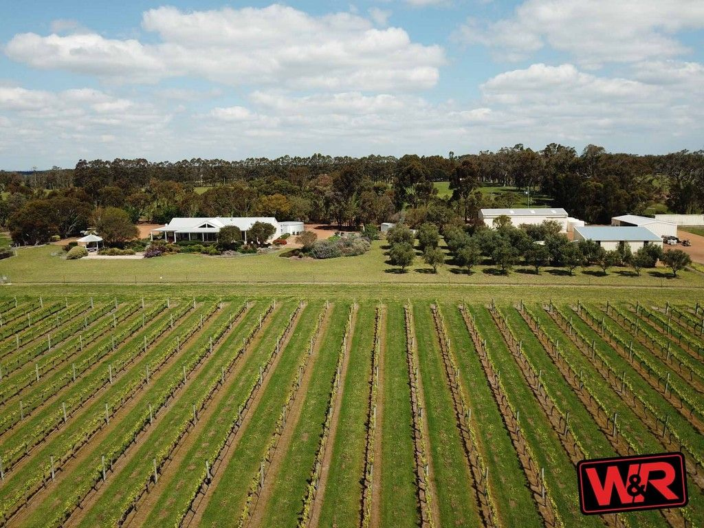 For Sale: Windrush wines & Café – versatile & lifestyle - 70ac https://t.co/3A95nENrFd   - Income from 3 bedroom holiday accommodation Vines, Wine, Café, & Livestock - 11.8 ac of vineyard, Ancillary accommodation & many sheds #wa #mountbarker #forsale #farmproperty #realestate https://t.co/E5JuFLAYWZ