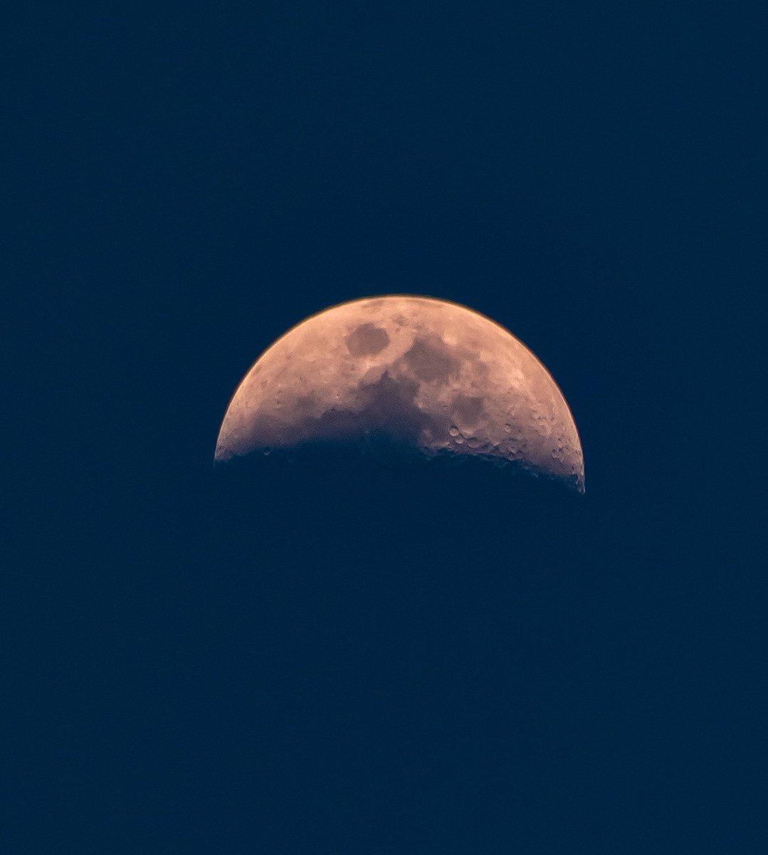 Blue sky moon tonight #moonphases #waxingcrescentmoon #canont7i #observethemoon #skywatcher #weather #astrophotography #themoontonight #luna #autumn #octobermoons #autumnmoons #octobernights #autumnnights #autumnsky #naturewalks #naturetherapy https://t.co/EqN7Hig74v
