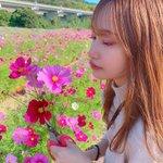 kandai20miss_5のサムネイル画像