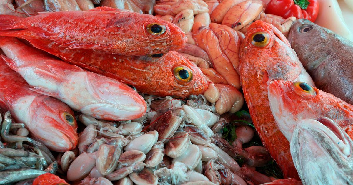 Hoxe Comemos Peixe