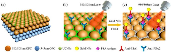 ⚗️Double Stopband Bilayer Photonic #Crystal Based Upconversion Fluorescence PSA #Sensor  ▶️https://t.co/9HaxGJ8k57 @INC_CNRS @ENSICAEN  @Universite_Caen @Reseau_Carnot @Carnot_ESP  @CNRS @CNRS_Normandie @normandieuniv