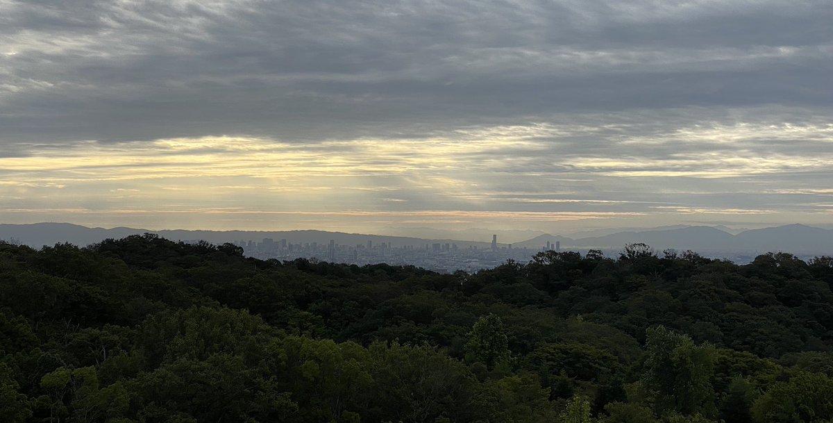 澄んだ空気を一気に吸入中。 #展望 #大阪 #眺め #深呼吸 #自分を整える #朝活 #フレッシュエアー https://t.co/Tu1GY0eGS9