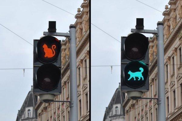 ロシアのゼレノグラーツクにある可愛い猫の信号