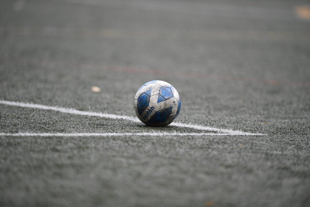 神奈川 県 高校 サッカー 選手権 2020
