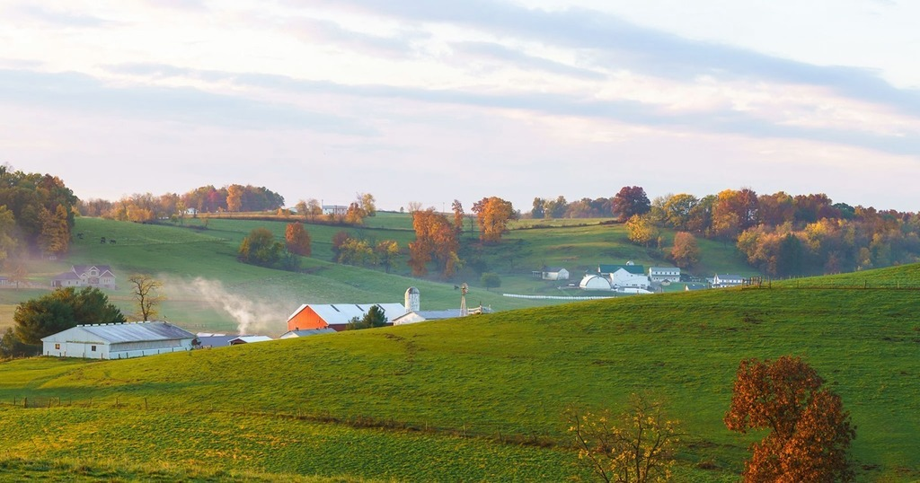 #farmfriday ⠀ ⠀ I love this early morning farm scene near Walnutcreek, Ohio. The early morning fog was starting to move out, and warm golden light was taking over. Come see these wonderful scenes yourself.⠀   #amishcountryinsider #fall #ohio #amishcountry https://t.co/3bCuR3WmEJ