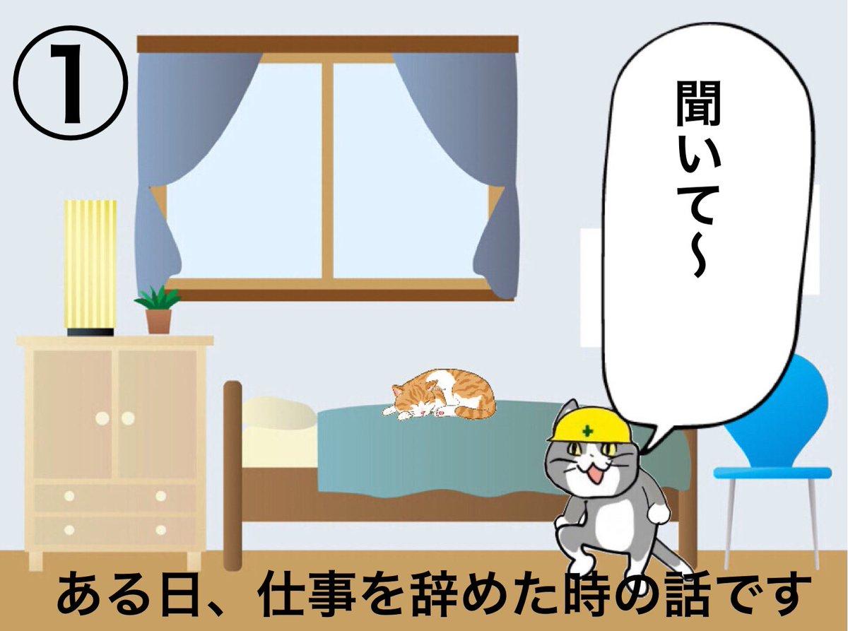 おはようございます!今日も一日ご安全に!「愛猫との想い出②」(結構前の話ですが転職した時の事。猫って人の言葉分かってますよね〜!)#現場猫