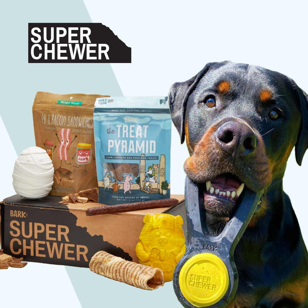 Have you tried @superchewer yet? Get a free Double Deluxe Upgrade on 6 & 12 month plans  Grab your deal here: https://t.co/q2WrTlvC5R  #DogPeopleGetIt #DogsOfBark #PraiseDog #BarkBox https://t.co/sFr3MmYt24