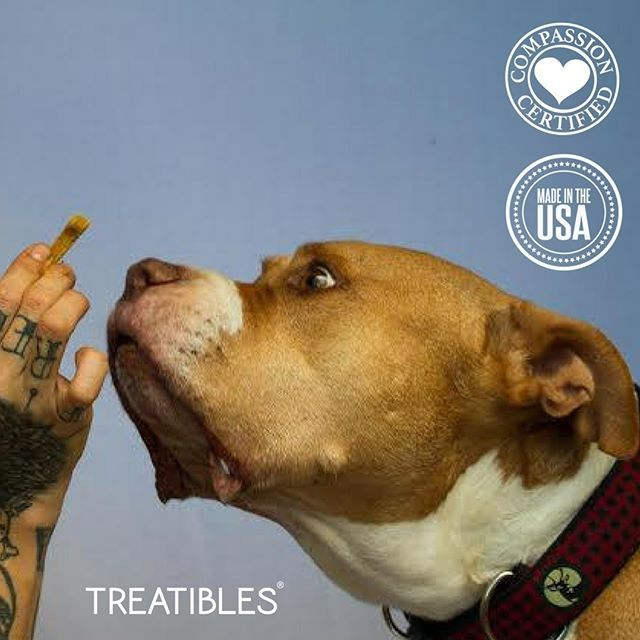 Learn More about Treatibles for Pets with Pain and or Anxiety.  Check out some of the Testimonials and see how Treatibles have helped: https://t.co/JlXB8dG8u6  10% OFF with Code: PAWSABLE https://t.co/58iua4FPp4