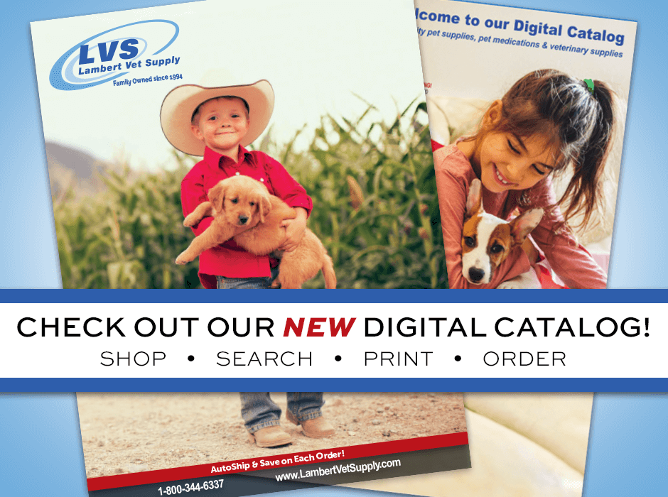 Welcome to our new Digital Catalog! Shop 218 pages filled with thousands of pet products, priced to give you the best deals possible! Trust us for easy, convenient, budget-friendly shopping! Go here -->https://t.co/lpgLOETBrU https://t.co/C6EUuRybAN