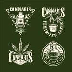 Image for the Tweet beginning: #cannabis #weed #marijuana Colorado governor