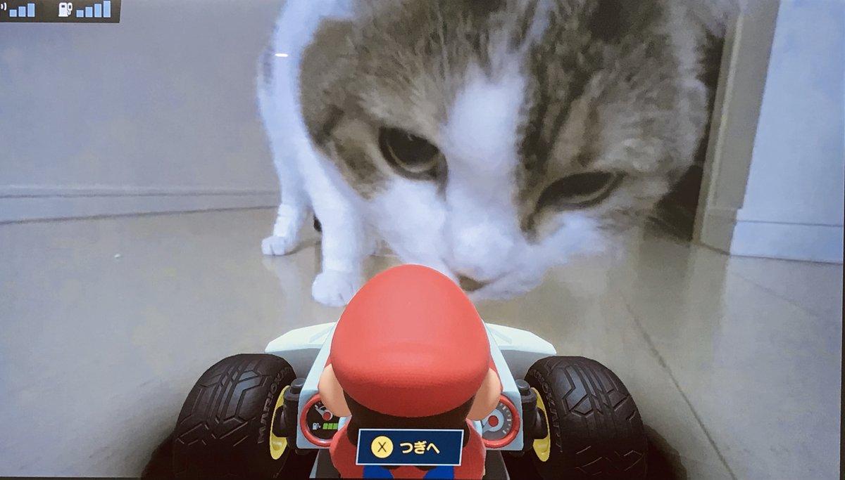 魔獣あらわる #MarioKartLive