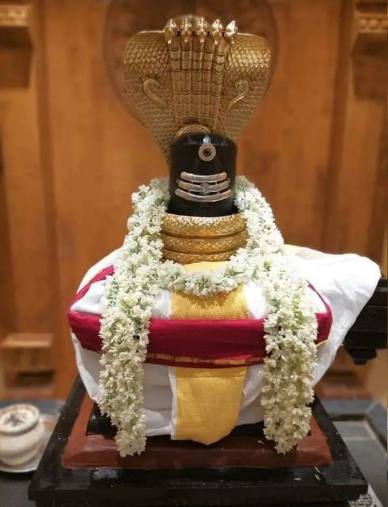 Photo Credit: Nalayni 121 from Pinterest ( https://t.co/RRU8HceNQZ ) May Lord Shiva bless all of us 🤗. #namastegod #shiva #lordshiva #kedarnath #kashi #hindu #haraharamahadev #mahadev_har #jyotirlinga #linga #somanath #somnath #mallikarjuna #mahakaleshwar #omkareshwar https://t.co/rmryra4409